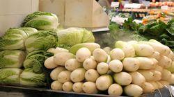 '농약 채소'가 올해 400건 이상