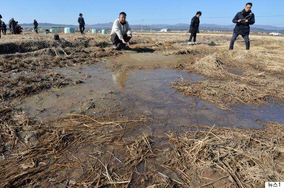 포항 지진에서 '지반이 늪처럼 변하는' 국내 첫 '액상화'