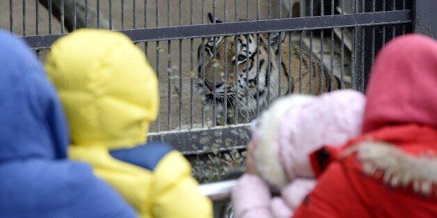 성희롱 의혹 서울대공원 동물원장이 감봉 징계를