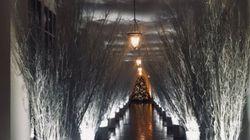 멜라니아의 백악관 크리스마스 장식은