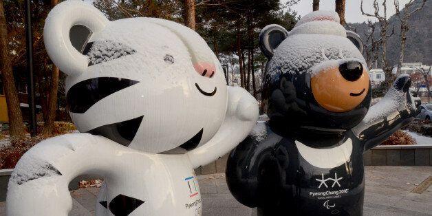 평창 동계올림픽에 대한 후원 금액이 목표치를