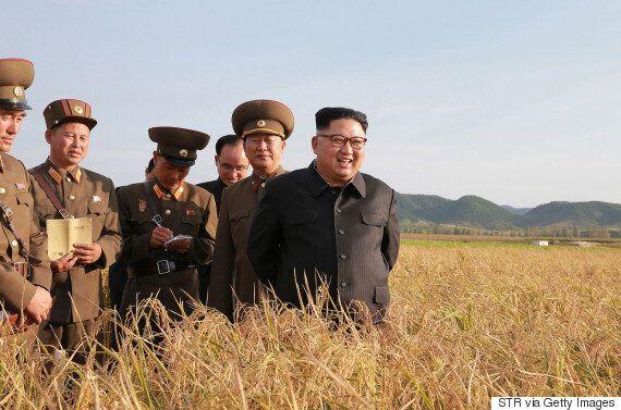 시진핑이 김정은의 축전에 답전을