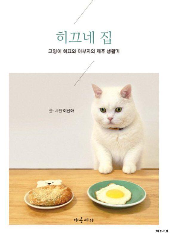 사진 에세이집으로 베스트셀러 1위 등극한 제주도 고양이의