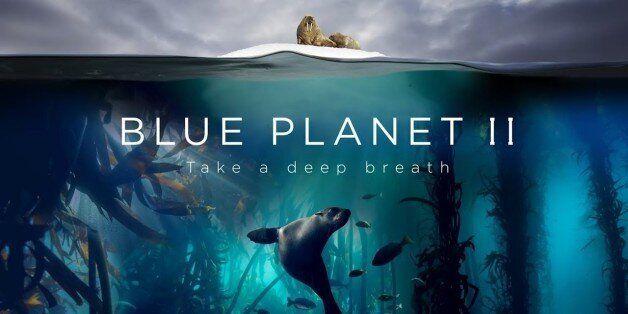 데이비드 아텐보로 경은 '블루 플래닛 II'에 '비극적 광경'이 담겨있다고
