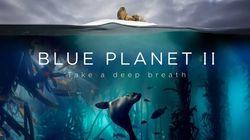데이비드 아텐보로는 '블루 플래닛 II'에 '비극적 광경'이 담겨있다