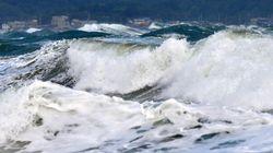 태풍 '란'의 북상으로 피해가 이어지고