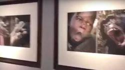 중국의 한 미술관이 아프리카인을 동물과