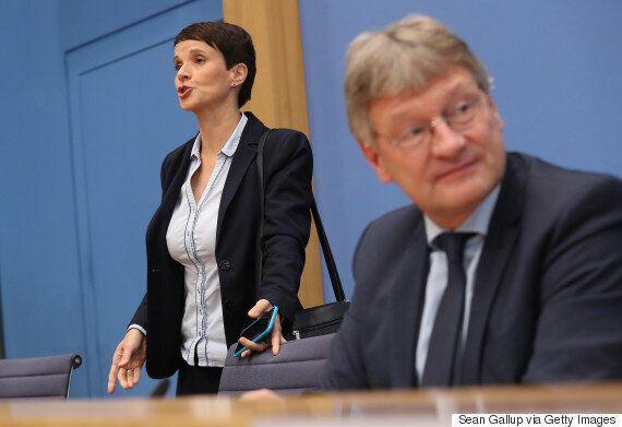 극우 '독일을 위한 대안(AfD)'을 이끌어 온 당대표가 '노선 갈등' 끝에 돌연
