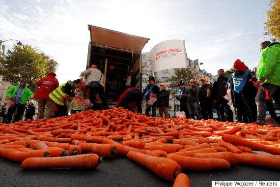 프랑스 담배 판매상들이 파리 길거리에 대량의 당근을 쏟아버린