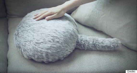 꼬리가 달린 고양이 엉덩이 로봇이
