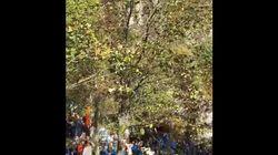 노르웨이인 수십 명이 이 나무 앞에 멈춰선
