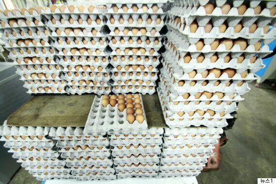 식약처가 '살충제 계란 먹어도 건강 해칠 가능성은 없다'고