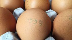 식약처, '살충제 계란 먹어도 건강에