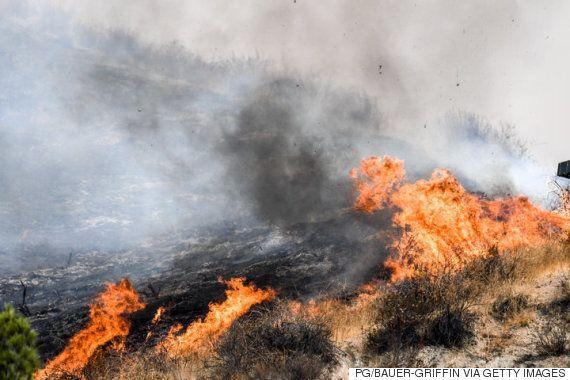 소방대원들이 로스앤젤레스에 번진 역대급 산불 제지에