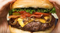 덜 익은 햄버거 패티를 반드시 의심해야 하는