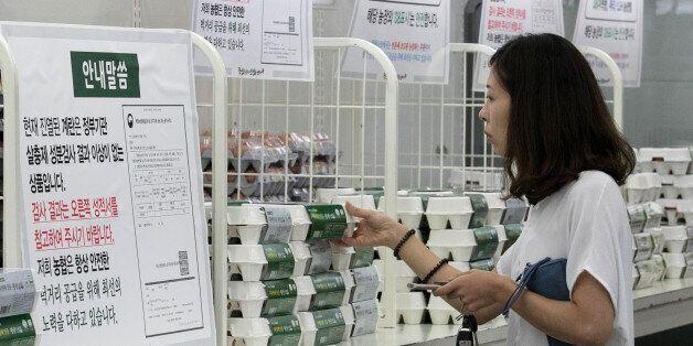 계란 판매 다시 시작한 대형마트·편의점
