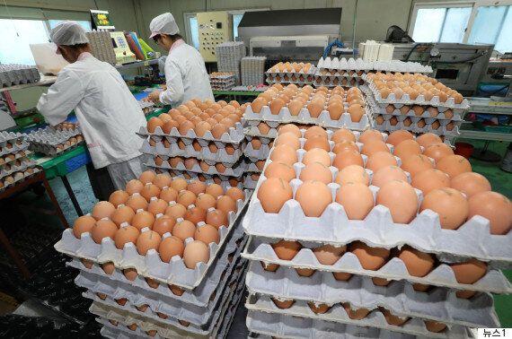 살충제 성분이 검출된 계란에는 '08마리·08LSH·09지현·08신선2·13정화·11시온' 표시가