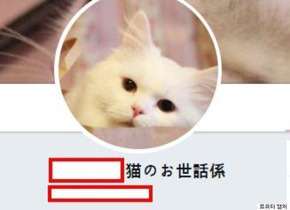 '고양이 집사'를 다른 나라 사람들은 뭐라고