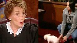 이 판사는 진짜 주인을 결정하기 위해 개를 법정에