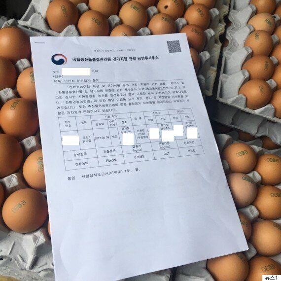 '살충제 계란' 파동에 대한 Q&A 6가지'살충제 계란' 파동에 대한 6가지