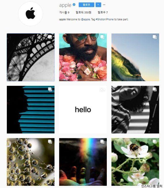 '애플'이 인스타그램을 시작하자 12시간 만에 30만 명이