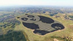 중국이 세계에서 가장 귀여운 솔라팜을