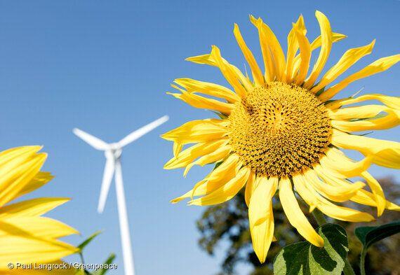 당신이 알아야 할 재생가능에너지에 대한 7가지