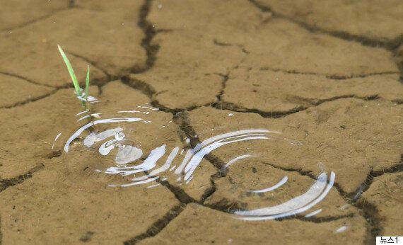 가뭄 끝 지역별 강수량은