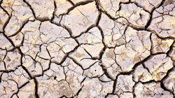 최악의 가뭄 중 유럽연수 떠나 논란이 된 의원들이