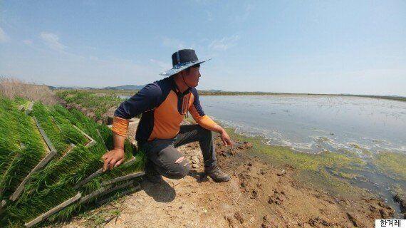 충남 최악의 가뭄에 도의원들의 유럽 연수가 논란이
