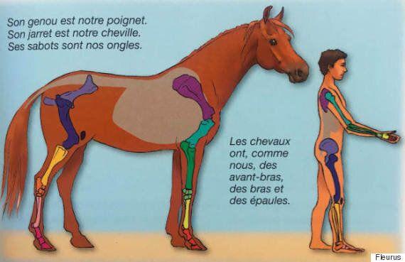 페이스북이 포르노로 인식한 프랑스 아동 서적의 삽화 한