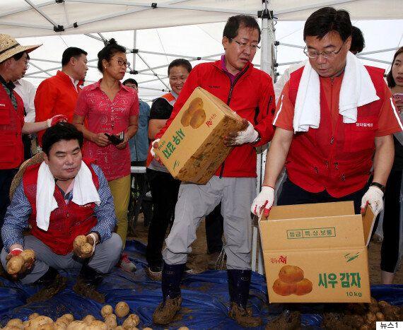 홍준표가 대선 패배 두 달 만에 자유한국당 새 당대표로