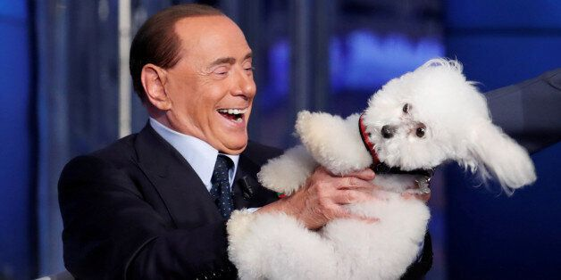 Italy's former Prime Minister Silvio Berlusconi plays with a dog during the television talk