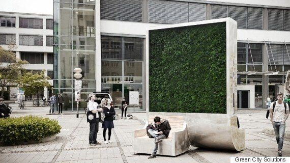 파리와 홍콩에 나타난 거대한 '이끼' 벽의