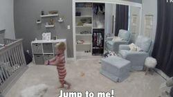 이 아이는 동생의 탈출을 돕고