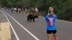 달리기 대회 도중 갑자기 곰이