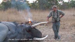아프리카 코끼리가 트로피 헌터를
