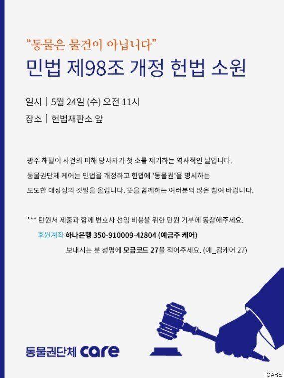 동물권 단체가 '헌법소원' 제기한
