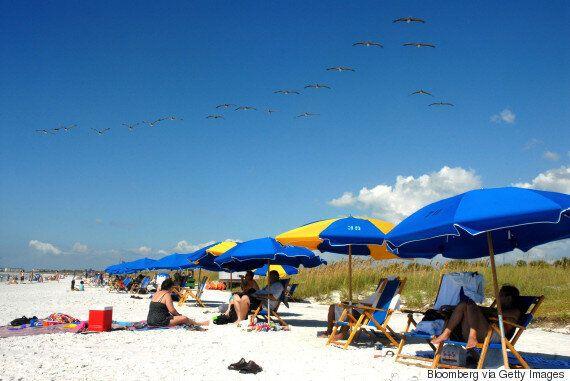 '닥터 비치'가 올해 미국 최고의 해변으로 꼽은 10곳