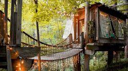 숲속으로 숨고 싶은 이들을 위한 트리하우스 숙소