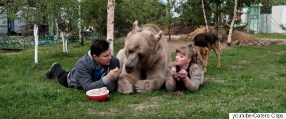 어느 러시아 가정집의 반려곰은 정원을 가꾸는 일도