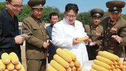 북한이 3월 중국에서 수입한 곡물의 양이 작년에 비해 33배나