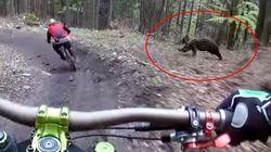자전거를 탄 친구의 뒤를 곰이 뒤쫓고 있는 절체절명의