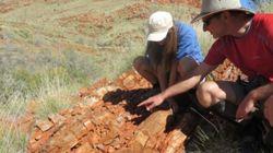 가장 오래된 육상 생명체가 오스트레일리아에서