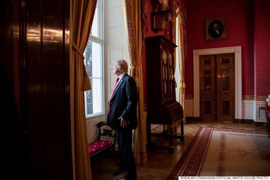 사진으로 본 트럼프 대통령의 첫