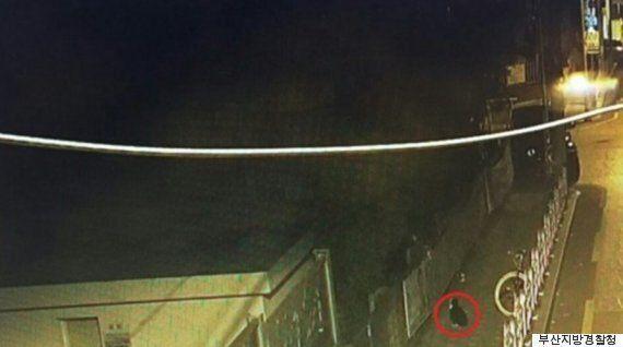 부산에서 '대통령 선거 벽보' 훼손한 범인의 놀라운