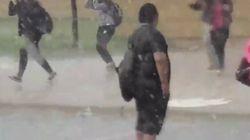 폭우가 오던 날 세상에서 가장 멋지게 서 있었던