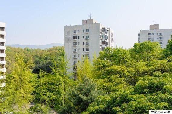 재건축과 함께 사라질 위기에 처한 '아파트 내 울창한