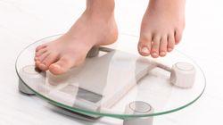 '체중 세트포인트' 항상성 이론의