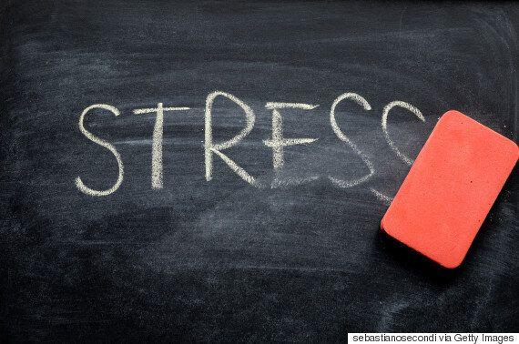 스트레스를 없애주는 3가지